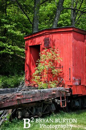 Cass Scenic Railroad 121 0514