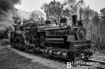 Cass Scenic Railroad 2014