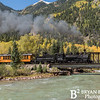 DSNGRR Fall Workshop 609 0916