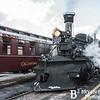 DSNGRR Winter Photo Train Sunday 727 022017