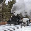 DSNGRR Winter Photo Train Sunday 498 022017