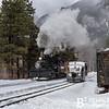 DSNGRR Winter Photo Train Sunday 497 022017