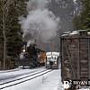 DSNGRR Winter Photo Train Sunday 495 022017