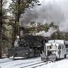 DSNGRR Winter Photo Train Sunday 501 022017