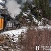 DSNGRR Winter Photo Train Sunday 458 022017