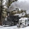 DSNGRR Winter Photo Train Sunday 502 022017
