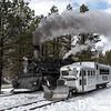 DSNGRR Winter Photo Train Sunday 506 022017