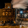 DSNGRR Winter Photo Train Saturday 183 022017