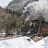 DSNGRR Winter Photo Train Sunday 411 022017
