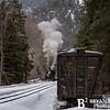 DSNGRR Winter Photo Train Sunday 494 022017