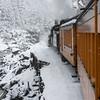 DSNGRR Winter Photo Train Sunday 224 022017