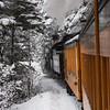 DSNGRR Winter Photo Train Sunday 258 022017