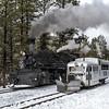 DSNGRR Winter Photo Train Sunday 504 022017