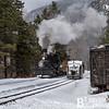 DSNGRR Winter Photo Train Sunday 496 022017