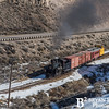 Nevada Northern Railway 786 0216
