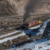 Nevada Northern Railway 784 0216