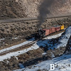 Nevada Northern Railway 783 0216
