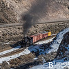 Nevada Northern Railway 785 0216