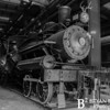Southeastern Railway Museum 04 052017