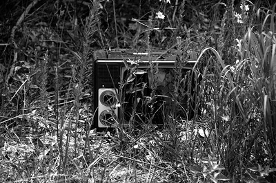 T.V. Wasteland, Cumberland county, Tennessee.