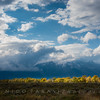 Storm Over the Grand Tetons, Antelope Flats Road