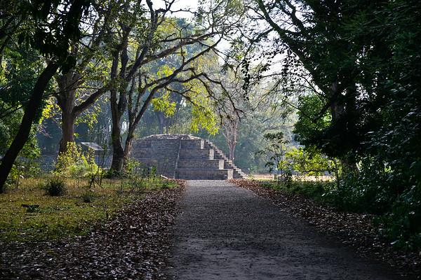 Deep in the Jungle, Copan Ruins, Honduras