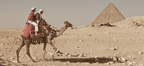 Hitching a Ride. Giza, Egypt