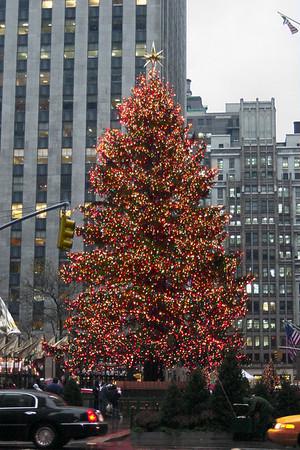 Rockefeller - Xmas tree