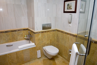 This room has both a bath and a shower...