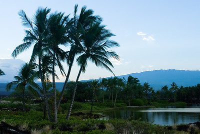 View of Hualalai