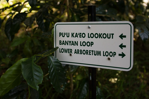 Right-hand rule...I start with the Lower Arboretum Loop