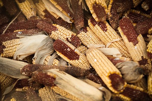 Why are farm weddings so corny?