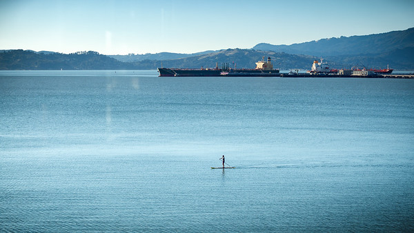We spot someone stand up paddle boarding in San Francisco Bay.  One of Craig and Linda's neighbors, perhaps?