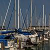 Boats at pier 39.