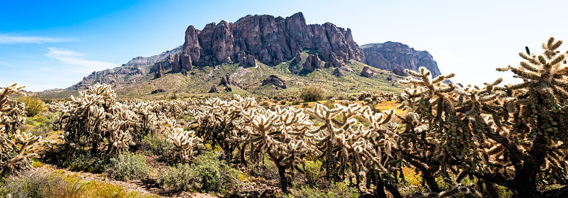 Superstition Mountains through Jumping Cholla Cactus