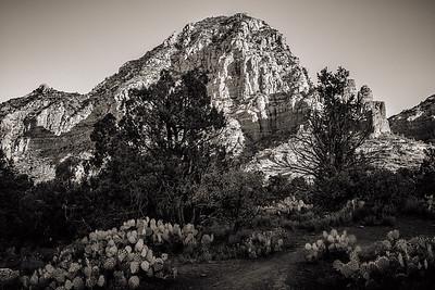 Sugarloaf Trail Head