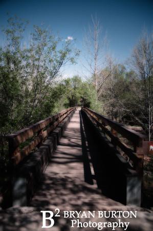 Arizona 123 0413