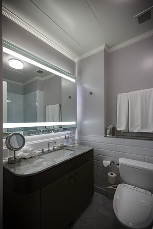 The only real gripe we might have with our room is the small size of the bathrooms...they could easily make these larger given how unnecessarily large the bedroom is