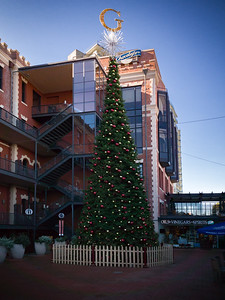 The Christmas Tree at Ghirardelli Square