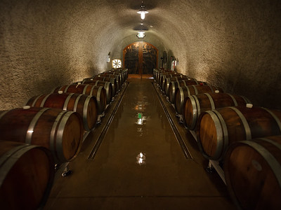 Just as we prepare to leave, Will shows up to give us a tour of their wine cave..and he educates us in the art and science of winemaking