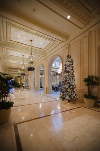 Before we check out from the Palace Hotel, I decide I should snap some photos of The Garden Court using my DSLR