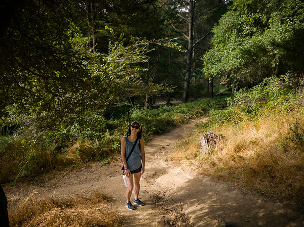 We start by heading west on to the Sequoia Bayview Trail