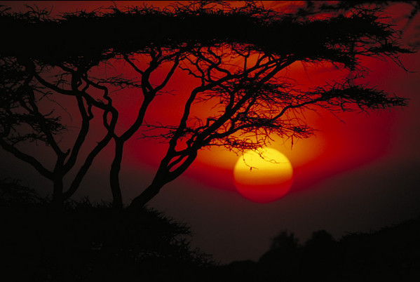 TANZANIA<br /> Photographs by  photo instructor Cliff Grassmick of the Spring 1997 Semester at Sea  voyage around the world.