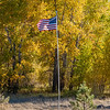 CTSRR Fall Friday 267 2018
