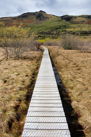 Boardwalk in Glenorchy, South Island, New Zealand