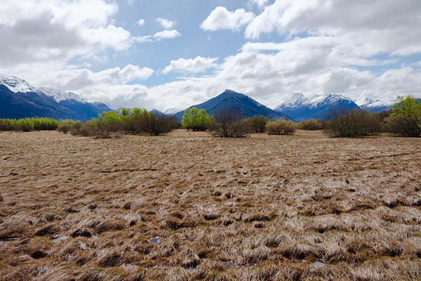 Marsh with Mountains in Glenorchy, South Island, New Zealand