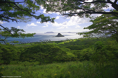 Kualoa Ranch, Maui - Chinaman's Hat Island in the background.