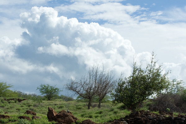 We enjoy good weather now, but will our luck last with thunderheads like this just over the horizon?