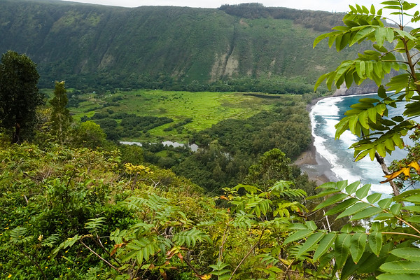 This valley also has a river running through it, but is a bit more lush than Pololu