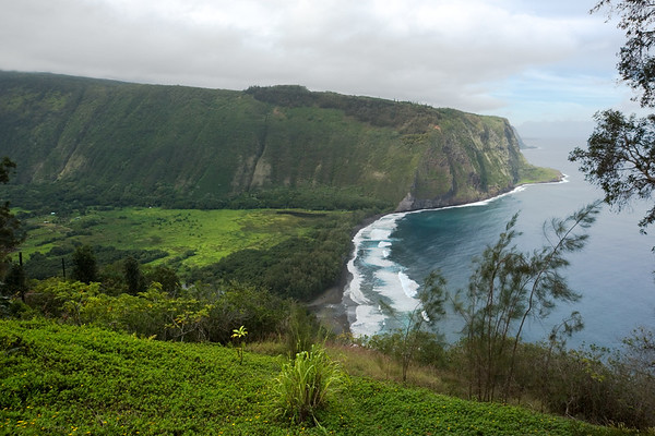 Waipio Valley is only 12 miles southeast of Pololu Valley (where we hiked yesterday)...but the rugged coastline in between is not accessible by car